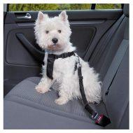 cinto de segurança para cães