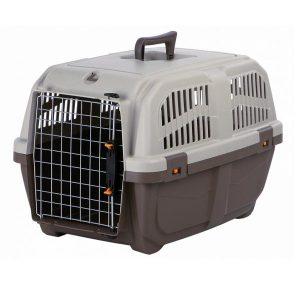 Transporte de cães em avião