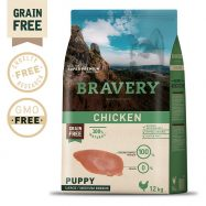 Bravery Chicken Puppy Dog