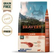 bravery lamb mini adult dog